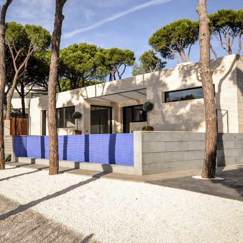 backyard detail with bright blue fence - Ballard & Mensua