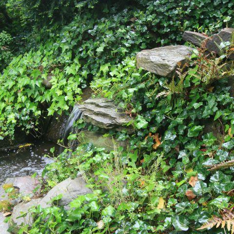 natural pond and landscaping detail from Ballard & Mensua