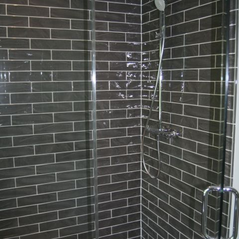dark shower detailing - McLean renovation - Smith project